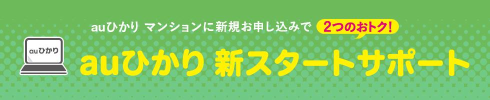 auひかり 新スタートサポート(マンション)