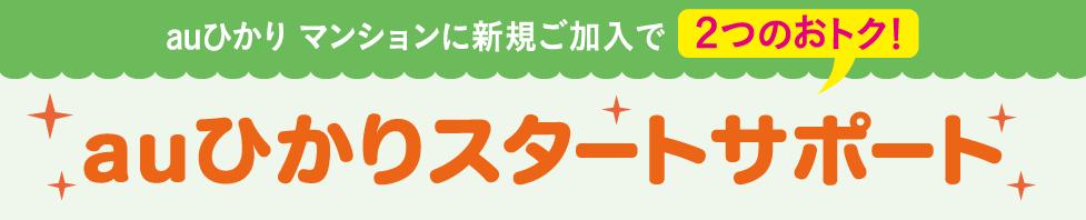 auひかりスタートサポート(マンション)
