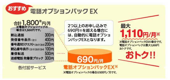 auひかり電話オプションパック(EX)