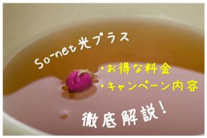 So-net光プラスとは?お得な料金・キャンペーン・代理店を徹底解説!