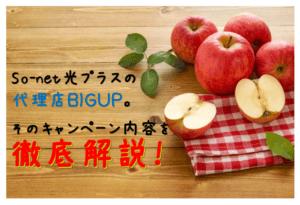 So-net光プラスの代理店BIGUPのキャンペーンを徹底解説!